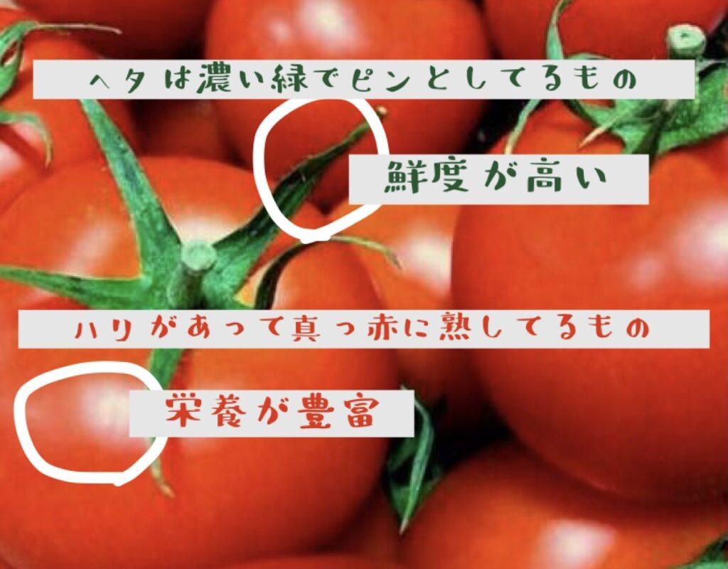 良いトマトの選び方