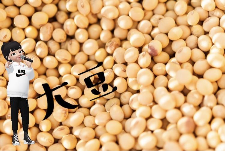 カラダに良い食材大豆