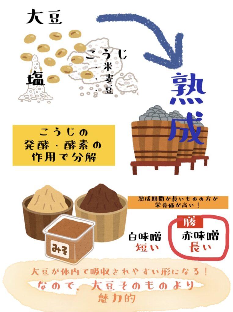 大豆そのものより発酵した方が栄養効果高い
