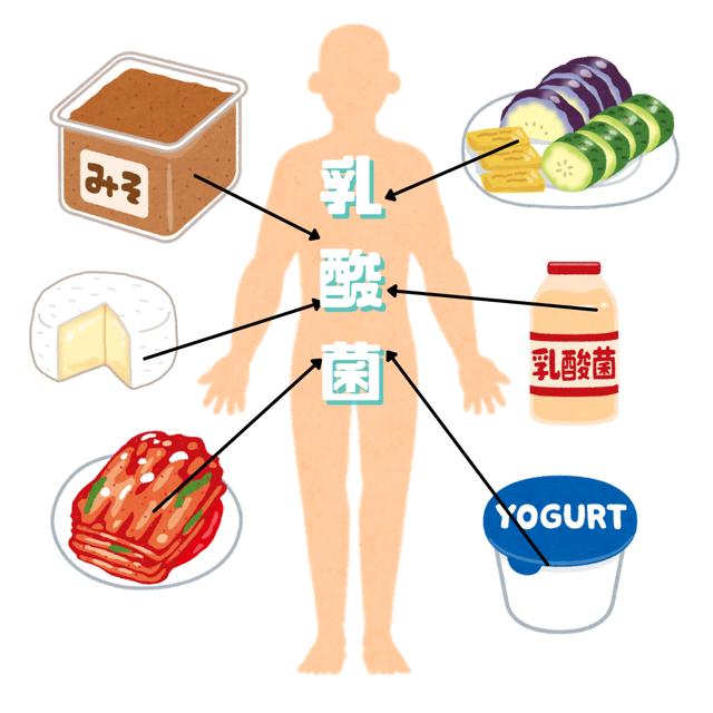 発酵食品を食べる事で体内にと閉じ込める。